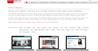 Genesis – 收费商业子主题,来至web-savvy-marketing.com[2015.4]